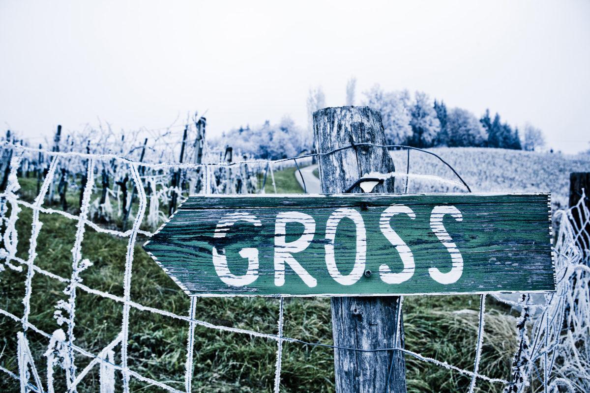 GROSS_Tafel-winter